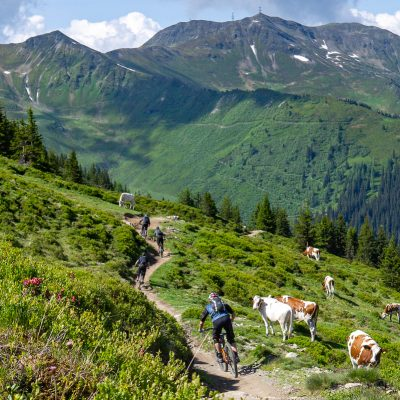 haklbergtrail-trail-trip-bike-guide